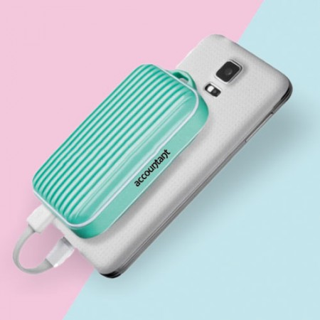 Giftsuncommon - Printed Powerbank For Accountant